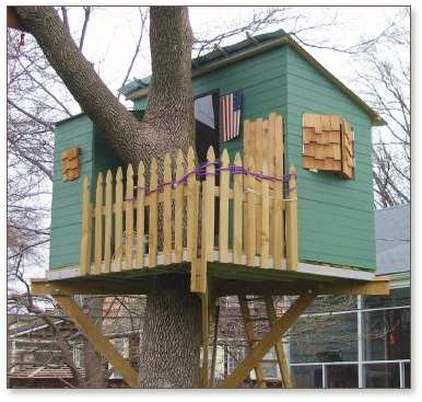 Kauri treehouse with shutters