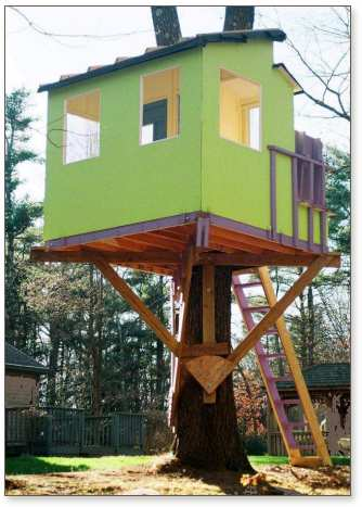 Kauri treehouse painted green